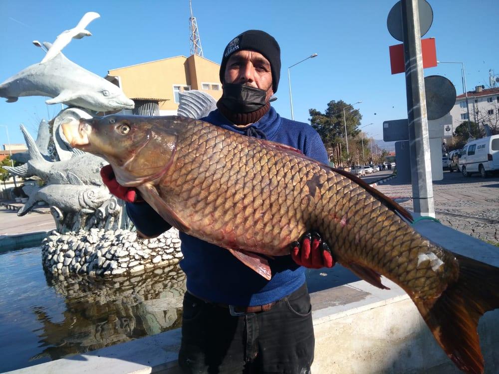 Enezli Balıkçı Gala'da 18.5 kg.lık Sazan Balığı Yakaladı